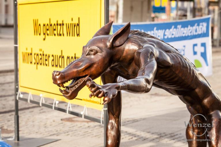 """Ausstellung """"Die Wölfe sind zurück"""""""